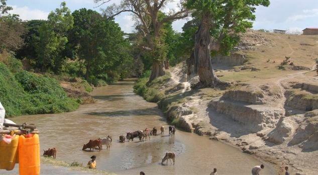 Ethiopia, river near Awasa